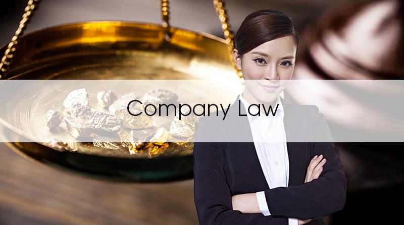 CompanyLawBusiness