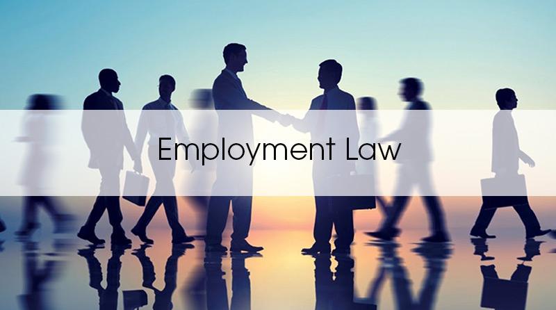 employmentlaw3